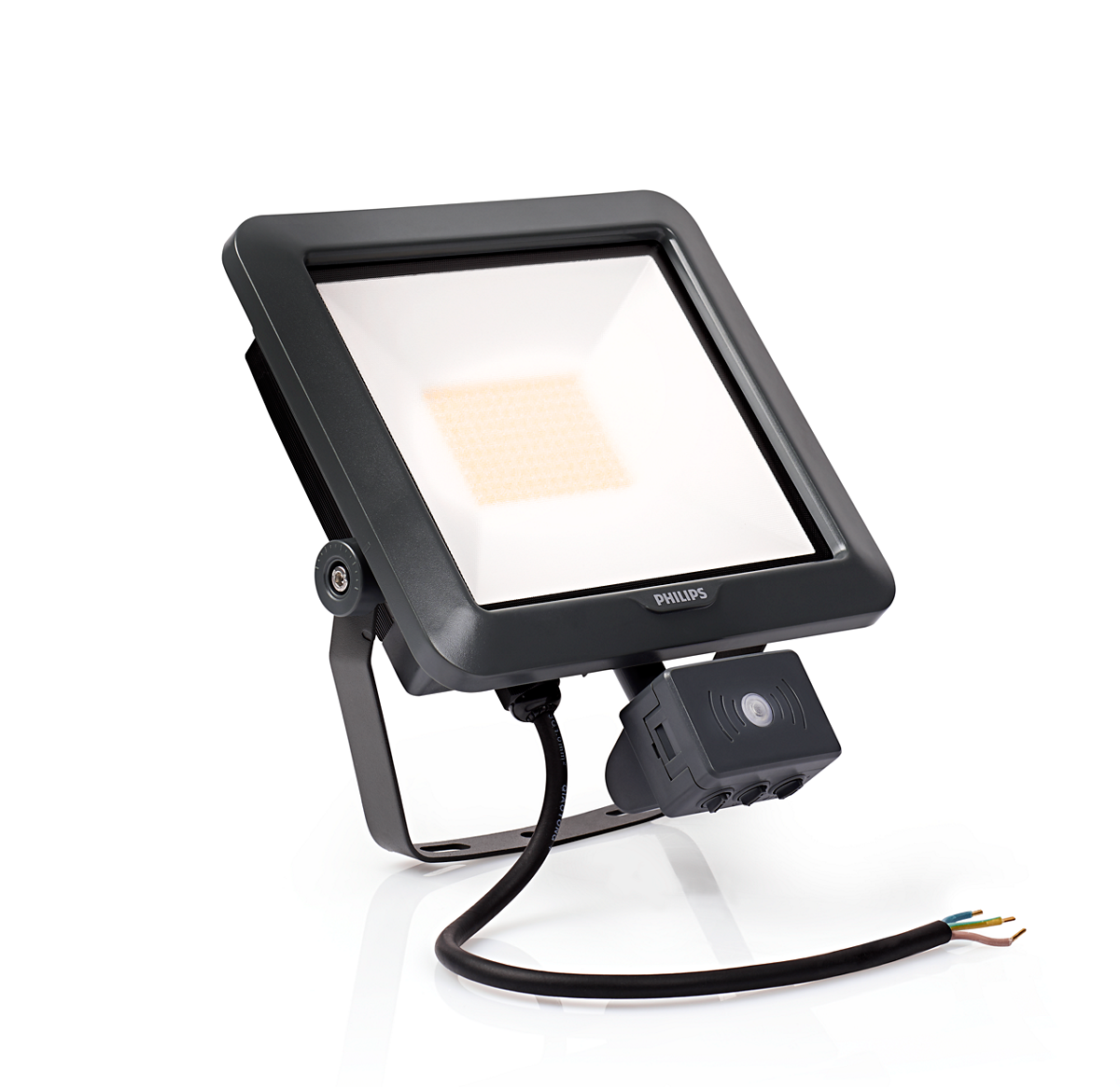 Ledinaire floodlight mini