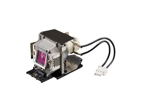 Replacement Module SP-LAMP-061