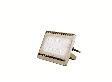 BVP161 LED26/CW 30W 220-240V WB GOLD