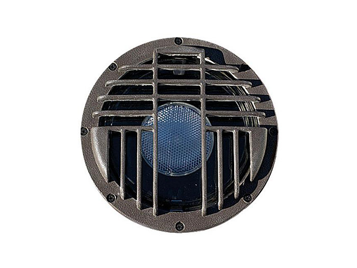 Inground, w/ Stainless Steel Ring, Stainless Steel, 100W PAR/R20, 120V