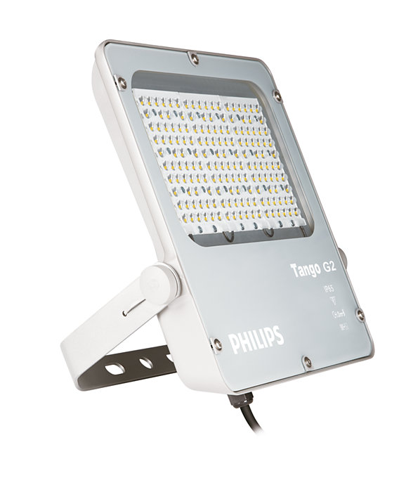 Best Area Lighting Luminaire within Your Budget