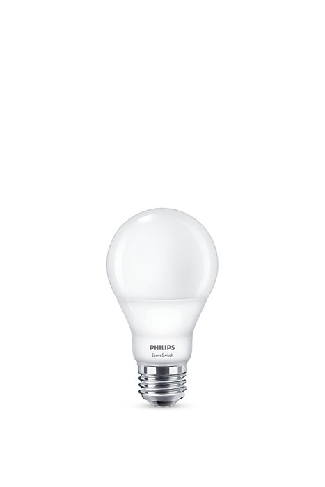 One lamp. Your switch. Three light settings.
