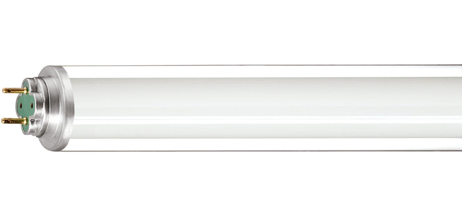 Iluminación fluorescente para entornos fríos