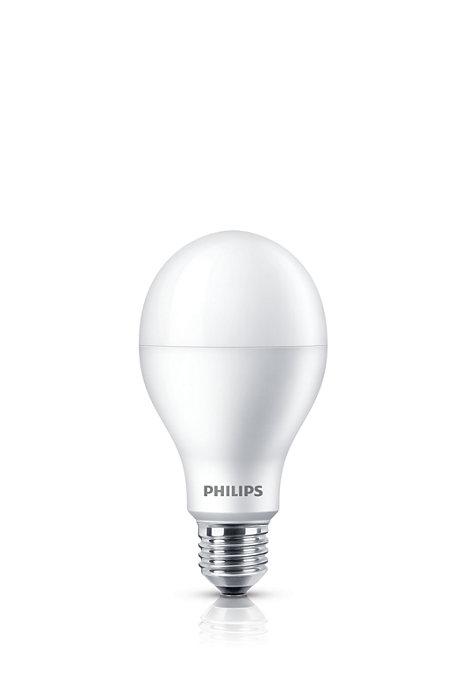 Lampu tiada tanding