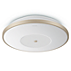 Hue White Drumlin ceiling light