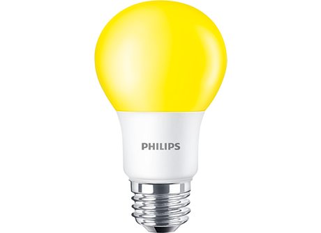 Standard LEDBulb BC8A19/LED/YELLOW/ND 120V 6/1