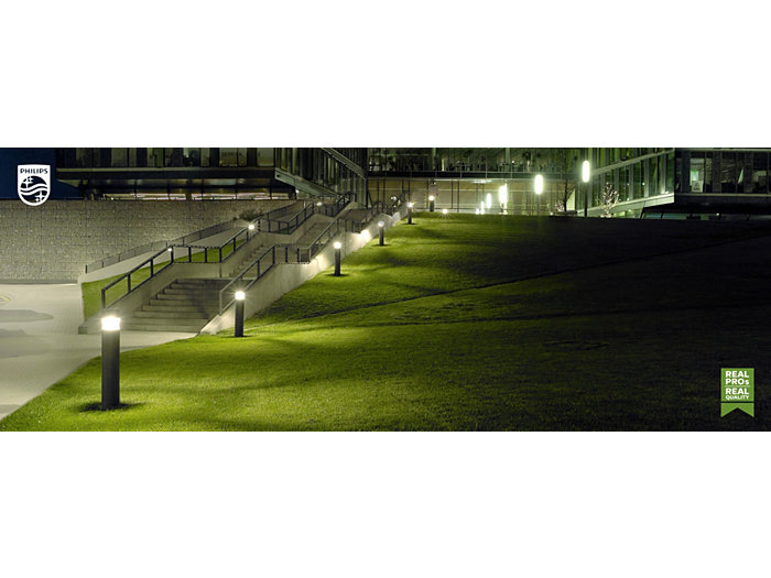 Outside park with evening lights and green grass