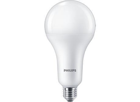 Standard LEDBulb LEDBulb 21W E27 6500K W A30 1PF/6 MX