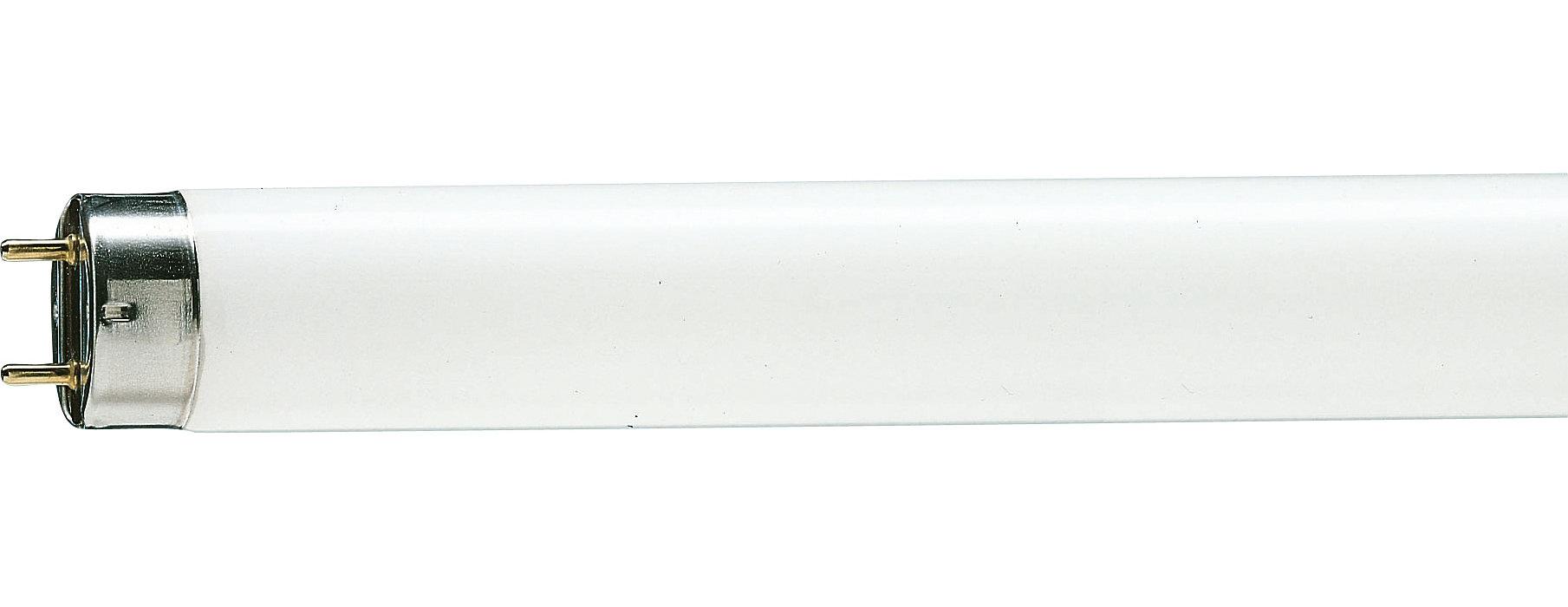 Iluminación fluorescente básica
