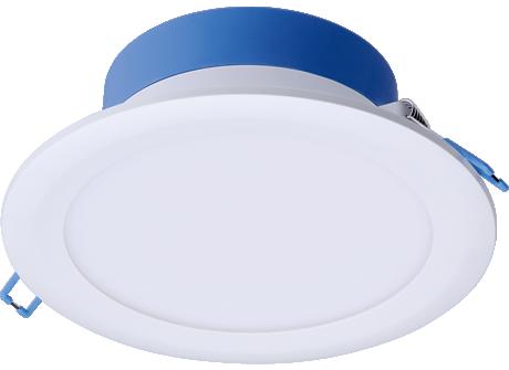 DN029B-2 LED12/CCT PSR-E D150 CAU
