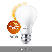 LED Lamp (dimbaar)