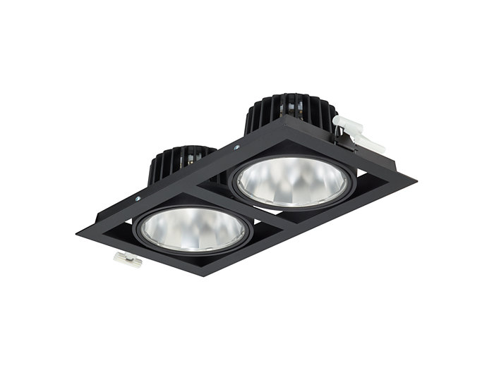 GreenSpace Accent Gridlight fully recessed, double version