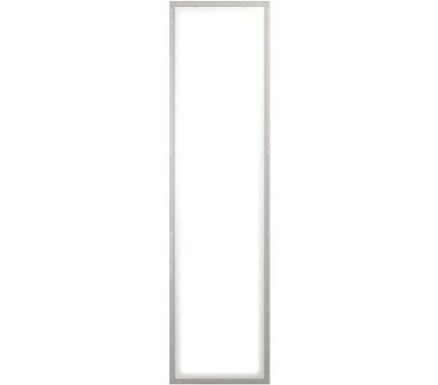 OLED Panel Brite FL300L ww A0