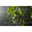 Łatwe podłączenie i oświetlenie ogrodu oraz podwórka