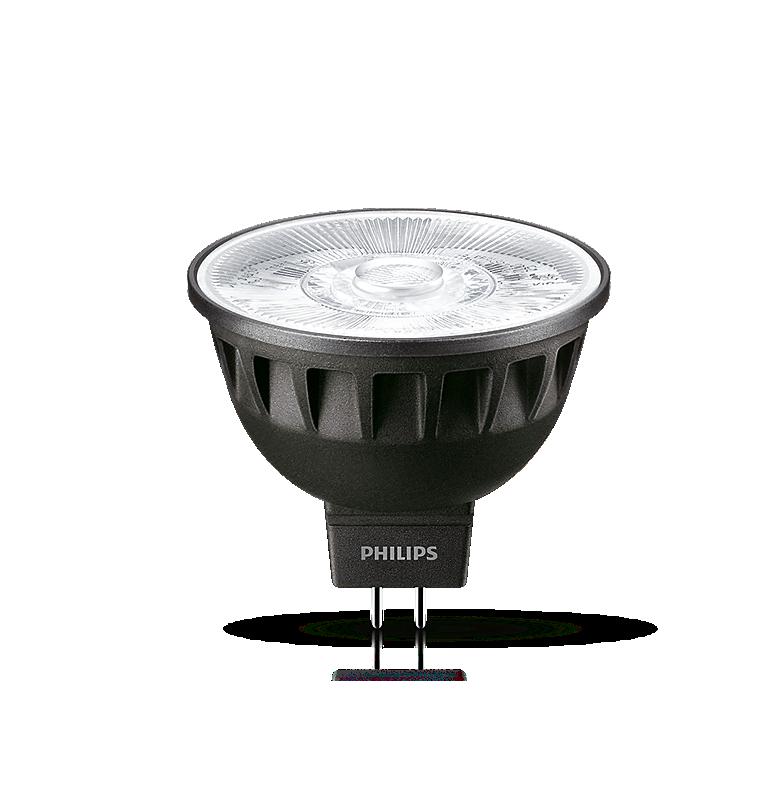 LED Focos