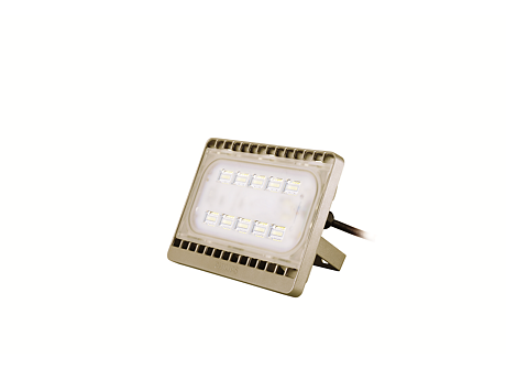 BVP161 LED23/WW 30W 220-240V WB GOLD